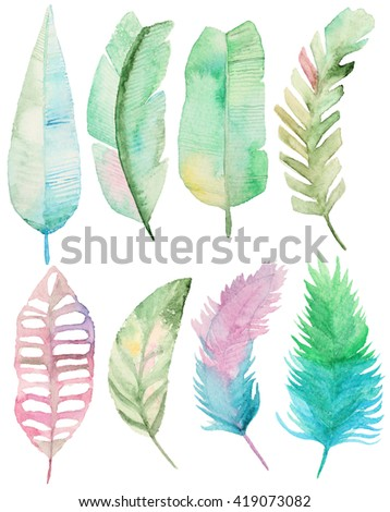 Watercolor set with tropical palms leaves. Palm leaves elements for your design. Collection Palm leaves - stock photo