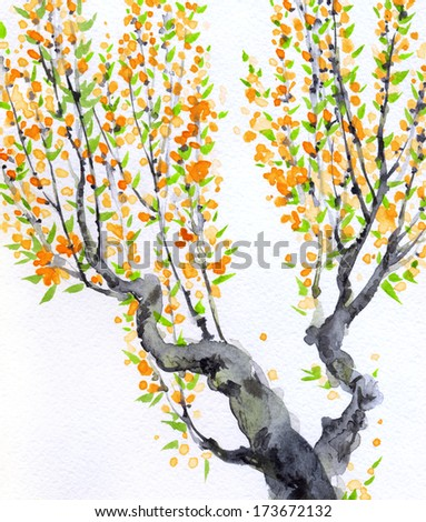 Watercolor spring background in Japanese style. Delicate orange flowers on the branches of an old tree  - stock photo