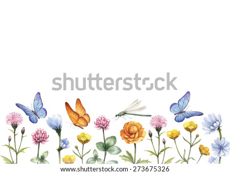 Watercolor wild flowers. Summer background - stock photo