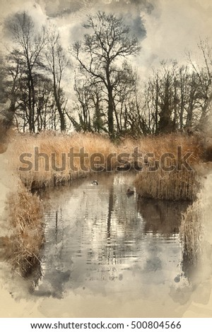 Watercolour painting of landscape image of Winter wetlands swamp area
