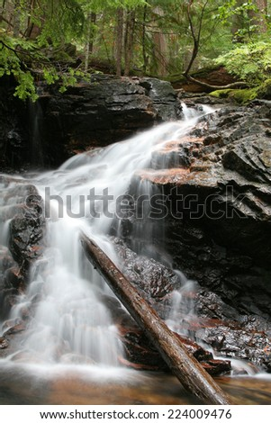 Waterfall and Log, North Cascades - stock photo