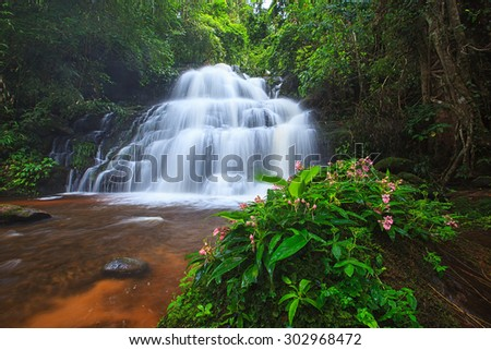 Waterfall in deep and fresh forest, flower front - stock photo