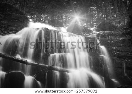 Waterfall in the Carpathian autumn forest. Water with motion blur. Monochrome colors - stock photo