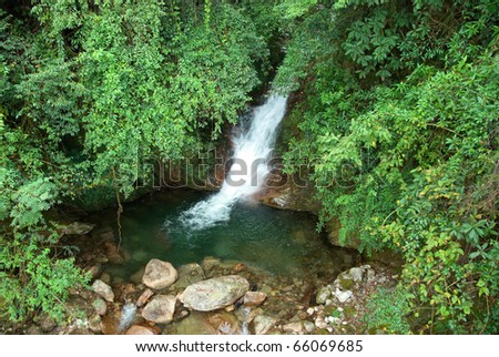 Waterfall in the forest surrounded by green trees