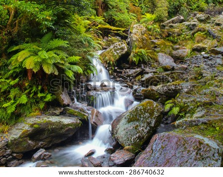 Waterfall Long Exposure imagein Lush Temperate Rainforest on the West Coast of New Zealand - stock photo