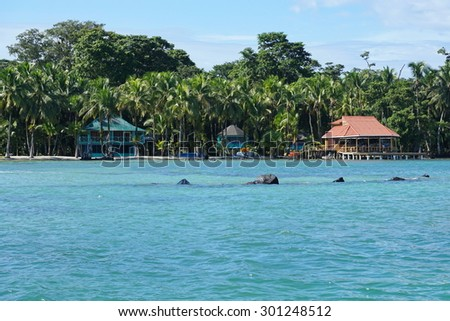 Waterfront house and restaurant on the shore of Carenero island, Caribbean, Bocas del Toro, Panama, central America - stock photo
