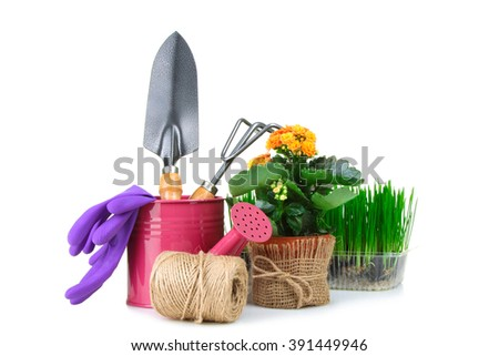 watering can and garden tools near the earth green shoots and a pot of flowers on a white isolated background