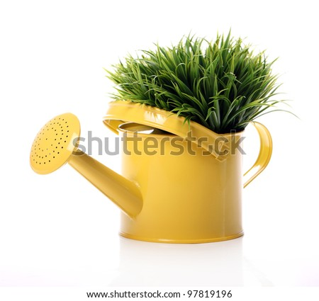 Watering can and grass over white background - stock photo