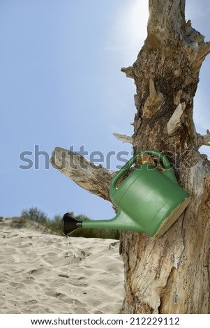 Watering can hanging on dead tree at beach - stock photo