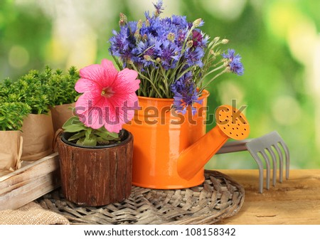 watering can, tools and flowers on wooden table on green background - stock photo
