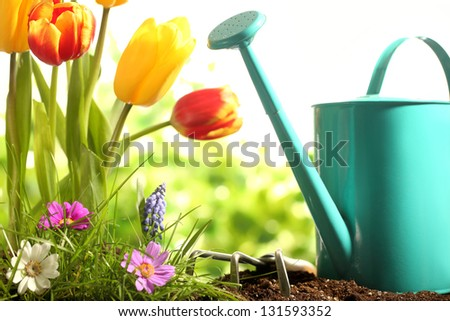 Watering can with flowers in the garden