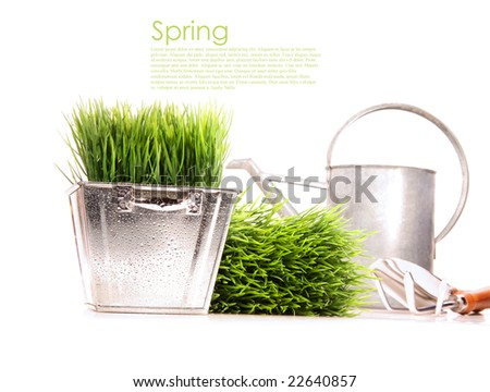 Watering can with grass and garden tools on white - stock photo