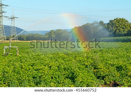 Watering device irrigate the potato field, agricultural landscape near Heidelberg, Germany, blurred focus due to water droplets and rainbow  - stock photo
