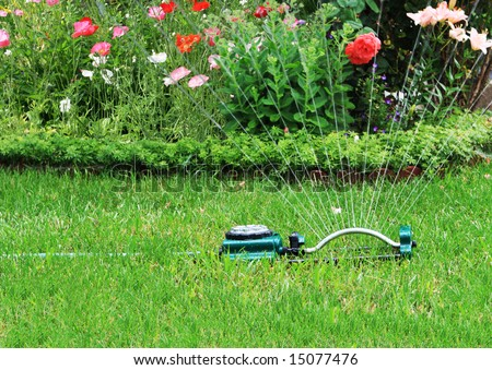 Watering grass and flower in the backyard - stock photo