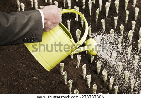 Watering money field Business and investment concepts - stock photo