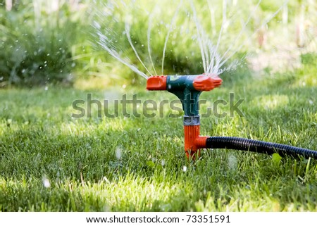 Watering of grass