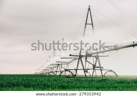 watering or irrigation fields of wheat and cereals to increase yields and prevent drying of the soil - stock photo
