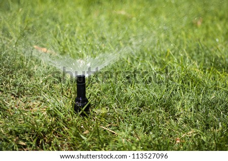 Watering the garden automatically