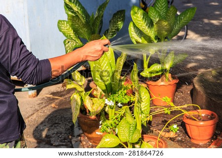 Watering the garden with a hose with a spray - stock photo