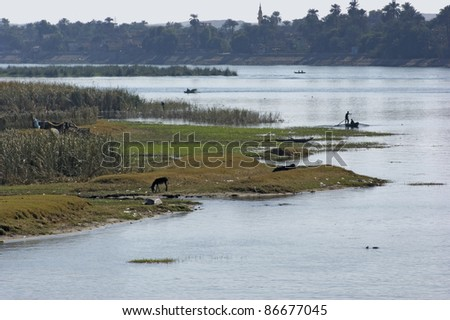 waterside scenery at River Nile in Egypt (Africa) including some distant fishermen on their boats at evening time - stock photo