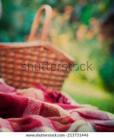 Wattled Basket on a Summer Green Background, selective focus, toned  image - stock photo