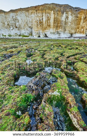 wave cut platform with cliffs on the Sussex coast at the Brighton to Newhaven Cliffs SSSI - stock photo