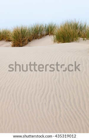 Wave pattern in the sand with tufts of grass - stock photo