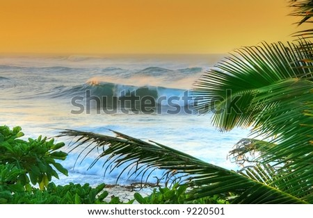 Waves and palm trees at sunset - stock photo