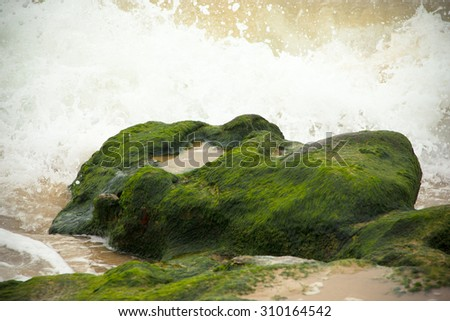 Waves breaking on the stone covered with seaweed - stock photo