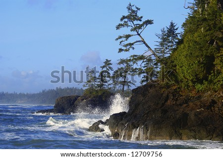 Waves crushing on Pacific Rim seashore on Vancouver Island - stock photo