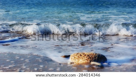 waves on the sea landscape on a background of blue sky - stock photo
