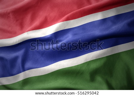 waving colorful national flag of gambia.