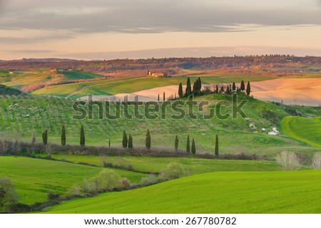 Wavy fields in spring sunset in Tuscany. - stock photo
