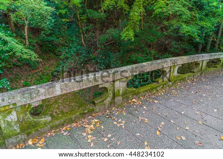 Way in forest - stock photo