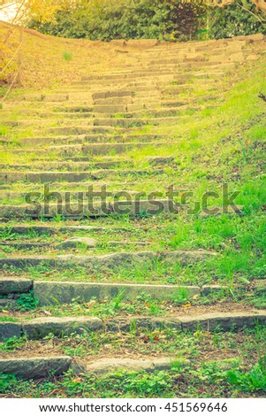 Way in forest  ( Filtered image processed vintage effect. ) - stock photo