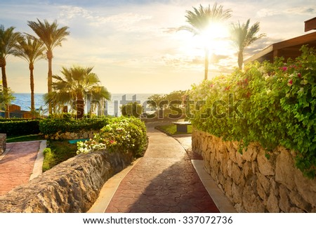 Way to beach of the red sea at sunset - stock photo