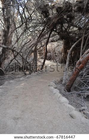 Way to Jordan River - stock photo