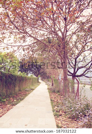 Way to the garden in autumn season with retro filter effect - stock photo