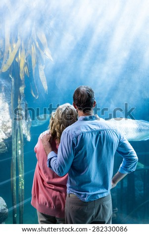 Wear view of couple looking at fish in the tank at the aquarium - stock photo