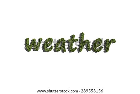 weather text tree with white background concept of typography - stock photo