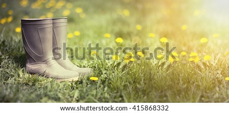 Website banner of wellington boots in spring with dandelion flowers - stock photo