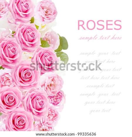 Wedding background with tea and rosy roses isolated on white with sample text - stock photo