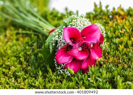 Wedding bouquet of pink Calla lilies lying on green grass - stock photo