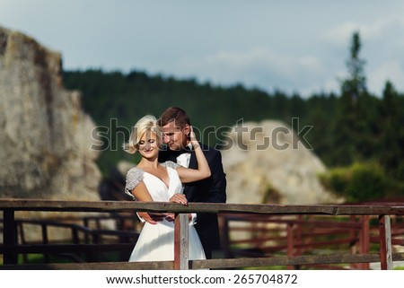 wedding couple in a beautiful dress posing against the backdrop of gorgeous mountain - stock photo