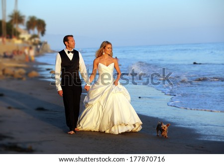 Wedding couple walking on the beach with their dog - stock photo