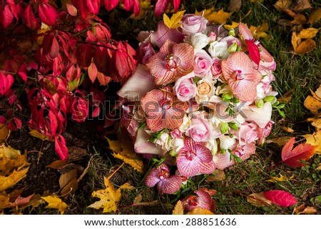 Wedding golden rings on bridal bouquet with gentle orchid, pink roses and white freesias in autumn park - stock photo