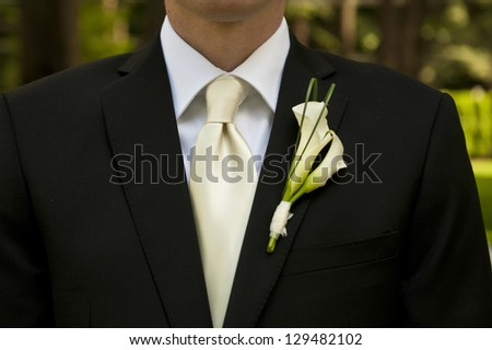 Wedding groom with corsage and tie - stock photo