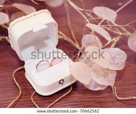 Wedding rings in white leather box, soft focus.