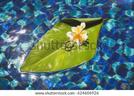 Wedding rings on a palm leaf with a frangipani flower floating in pool. Bali. Indonesia