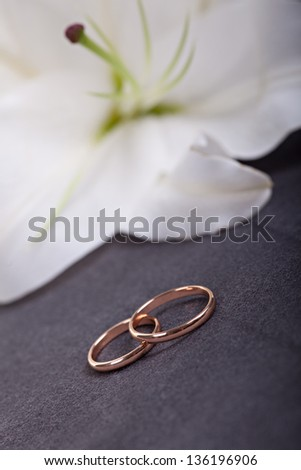 Wedding rings on dark background against white lilly flower - stock photo